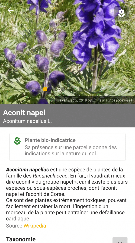 Fiche d'information d'une plante