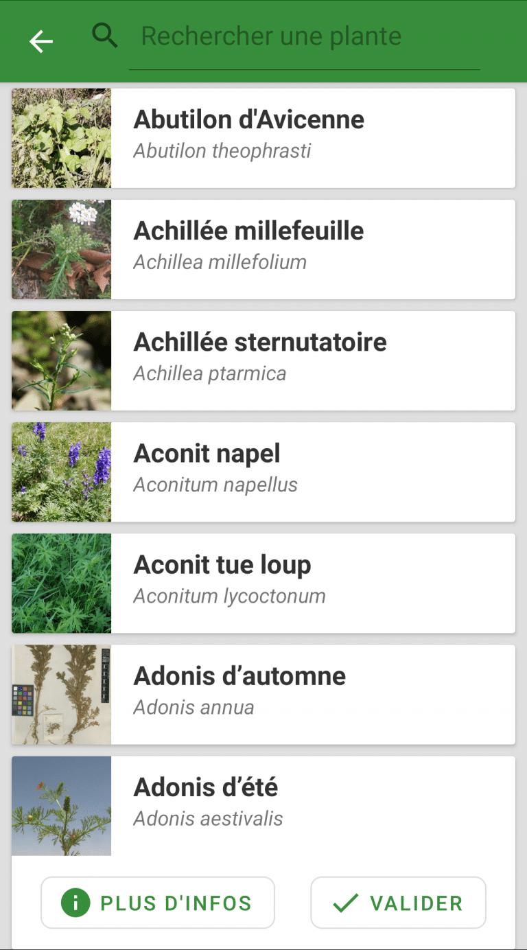 Liste des plantes bio-indicatrices
